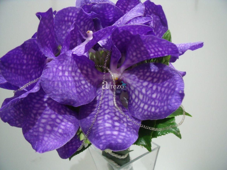 Orquidea Morada zoom