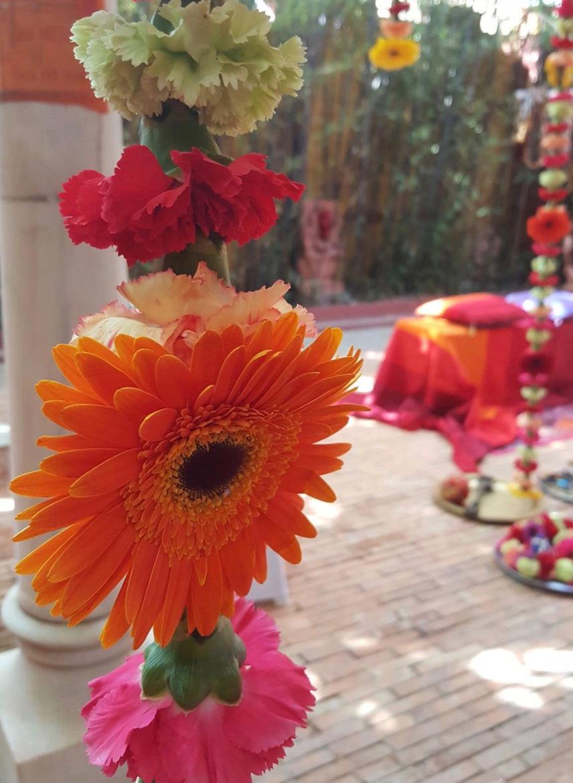 Lianas De Flores De Cerca 3