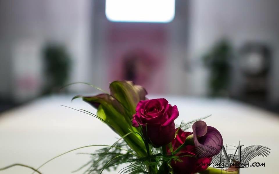 Pasarela Flor Roja 3