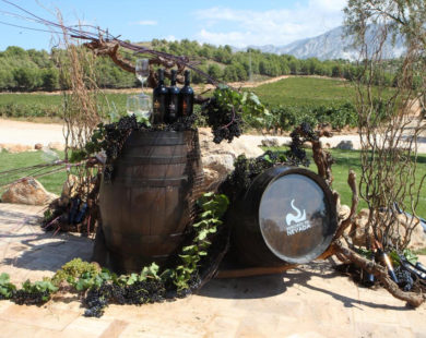 Decoracion De Bodegon Evento Vendimia Bodegas